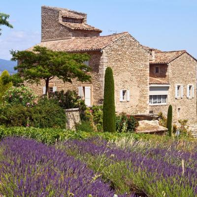 Mas de Provence mariage - shutterstock - Picture by Irakite